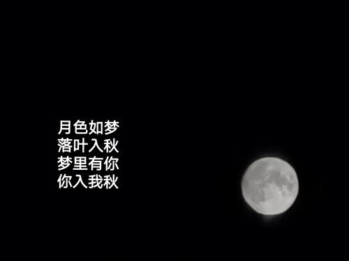 月色如梦 落叶入秋 梦里有你...