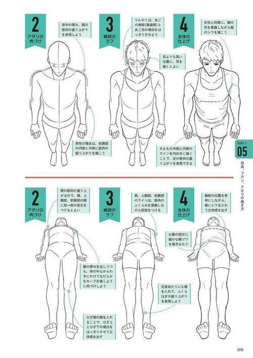 【素材分享】人体透视看不懂?站...