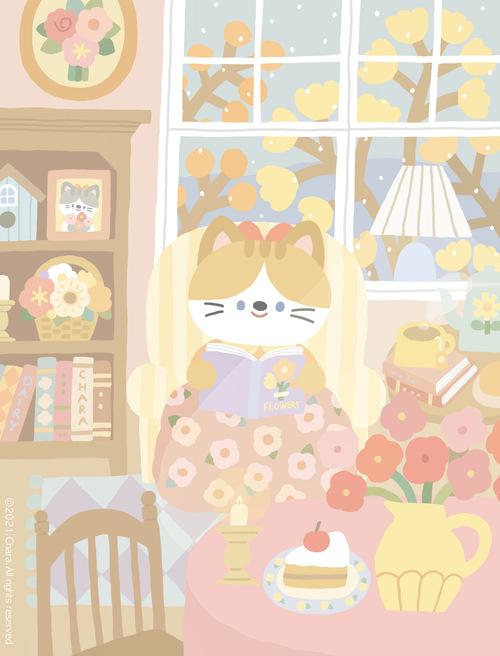 小猫日常✨