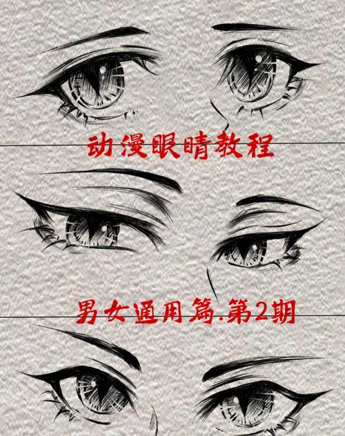 【绘画参考】动漫眼睛画法~